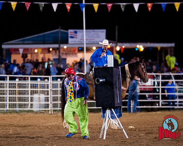 Mike Wentworth - Southern Rodeo Company
