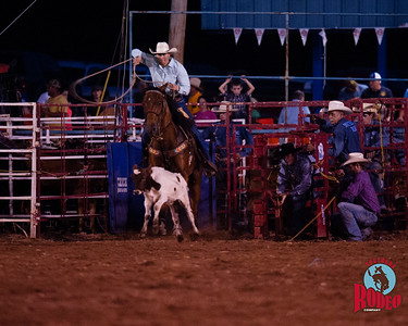 Roping - Southern Rodeo Company