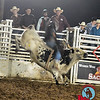 AJ Smith takes on Free & Easy at Jasper Bulls and Broncs Oct 12, 2013
