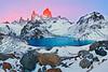 #293 Fitz Roy, Laguna de los Tres, Los Glaciares Natl. Park, Argentina