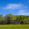 Riparian Habitat, Patagonia-Sonoita Creek Preserve