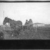 [Aboriginal people in a horse-drawn wagon]