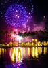 fireworks  purple_pond  9394SRGb