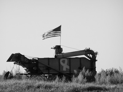 """Harvesting Patriotism  """"The great cities rest upon our broad and fertile prairies. Burn down your cities and leave our farms, and your cities will spring up again as if by magic; but destroy our farms, and grass will grow in the streets of every city in the country."""" -William Jennings Bryan, Cross of Gold, Speech given at the Democratic National Convention, July 9, 1896"""