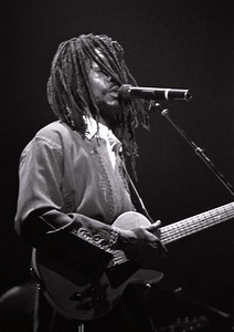 Peter Tosh, Reggae Recording Artist