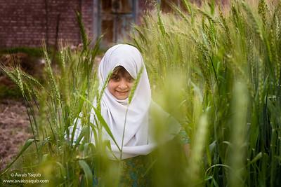 Wheat Diva
