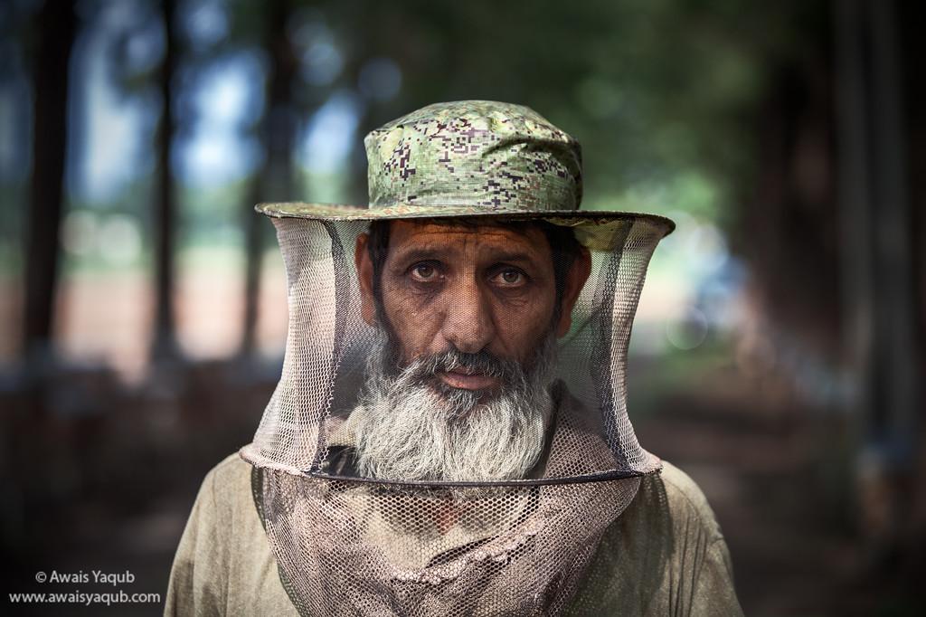 Bee Farmer
