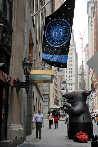 The Rats in NYC Are Getting Bigger and Bigger