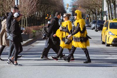 Bees Be Walkin'