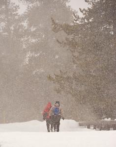 Yellowstone Walk in Snow