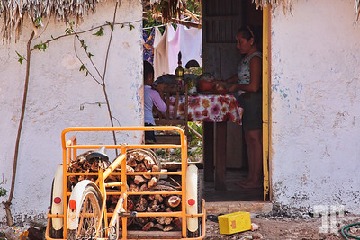 open-door-people-peto-mexico