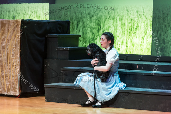 www.shoot2please.com - Joe Gagliardi Photography  From Valleyview_Wizard_of_Oz_ game on May 19, 2017