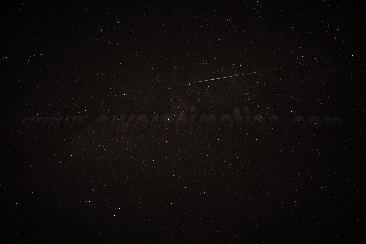 A bright Perseid captured at 2:22 am (PDT) on August 12, 2012. Constellations: Cygnus and Lyra<br /> <br /> Camera: Canon EOS 5D Mark II - Lens: Canon EF 24mm f/1.4 L