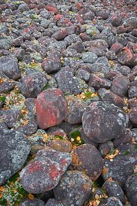Blood Stones