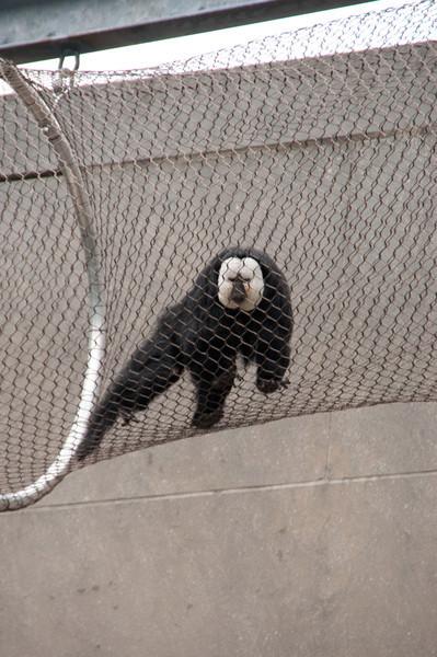 Zoo Visit - Sep 11, 2011