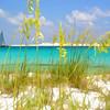 Noriega Point, Florida