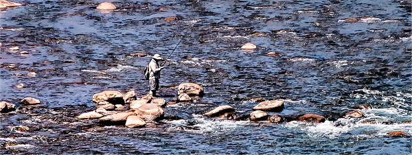 On the Animas River in Durango, Colorado a fisherman takes advantage of the low summer water.