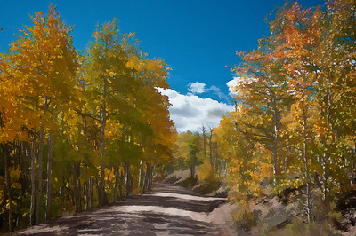 Blue skies and golden aspens on Middle Mountain near Vallecito, Colorado