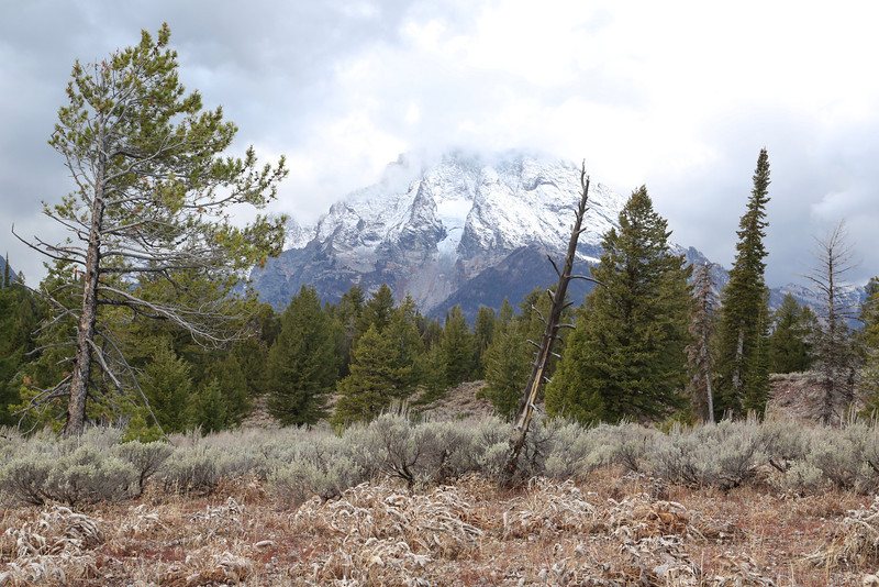 A mountain in the Teton Range from inside the Park.  Just above the North Jenny Lake entrance.