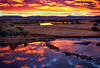 Accepted juried image (Color Scenic Landscape-Fall) 2011 International Exhibition of Photography