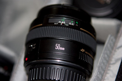"The EF 50mm f/1.4.  A great starter lens.  It makes a better kit lens than the original kit lens.  Good for low light, very sharp for a non-L lens.  Unfortunately the Ultrasonic motor here is not the ""ring type"" but instead an inferior type."