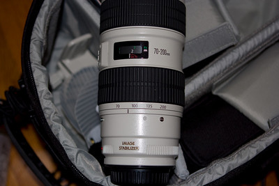 EF 70-200 f/2.8L IS.  This is an amazing lens for portraits, wildlife...  You can see the tripod ring inside the back on the left.  The lens weighs a ton.