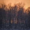 2/14/14<br /> <br /> Sunset through a snow shower.