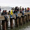 Mar 26: San Francisco. I was looking for waves to photograph and suddenly noticed how everyone was holding their pole at the same angles. Plus the colors and the lines of the dock--  Post-processing, a little auto-fix, which bumped contrast and brightened it a bit.