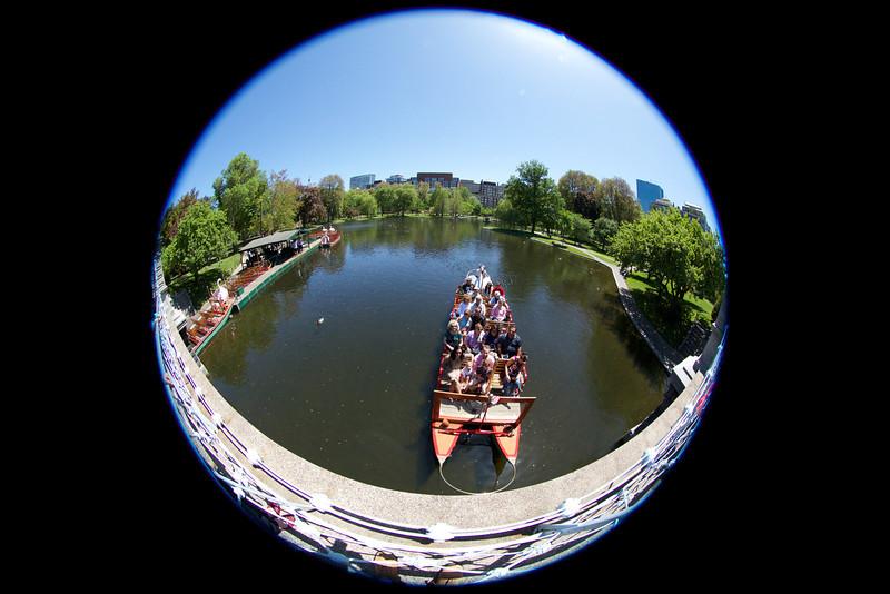 Swan Boat at Boston Public Garden