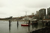 January 11, 2014.  A soggy day at the wharf