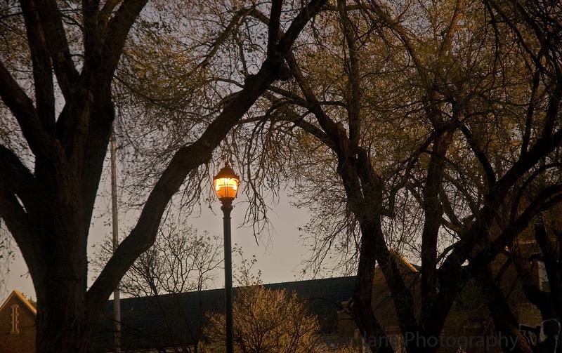 April 6, 2006 - lampshade