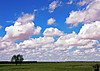 "August 5, 2006 - <a href=""http://jama.ama-assn.org/cgi/content/extract/295/20/2332"">New Mexico Skies</a>  When I saw this sometime back on the JAMA cover, I thought it looked like my skies, and so they were, and in 1940's ! It soon turned stormy today and looked like <a href=""http://vandana.smugmug.com/gallery/1550049"">this</a> ; then the sun <a href=""http://vandana.smugmug.com/gallery/1550049/1/86195074/Large"">set</a> and it was clear enuf to get the <a href=""http://vandana.smugmug.com/gallery/1550049/1/86195075/Large"">moon</a> ..ah, the endless summer !"