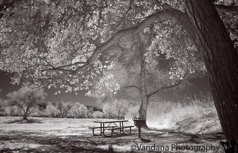 Feb 25, 2006 - IR at Caballo Lake State Park, NM. finally I think I'm just beginning to get the hang of it !