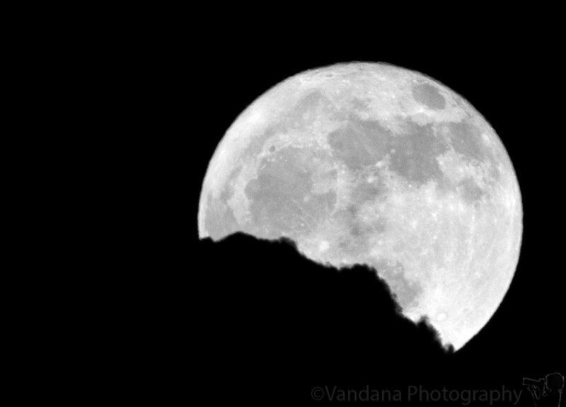"""June 11, 2006 - So who is eating the moon ?!  So there was no moonrise today, couldn't try any landscape with moon shots. This is taken @10.00pm today, when a dark cloud started to chew up the moon. More moon pics <a href=""""http://vandana.smugmug.com/gallery/1550049"""">here</a>"""
