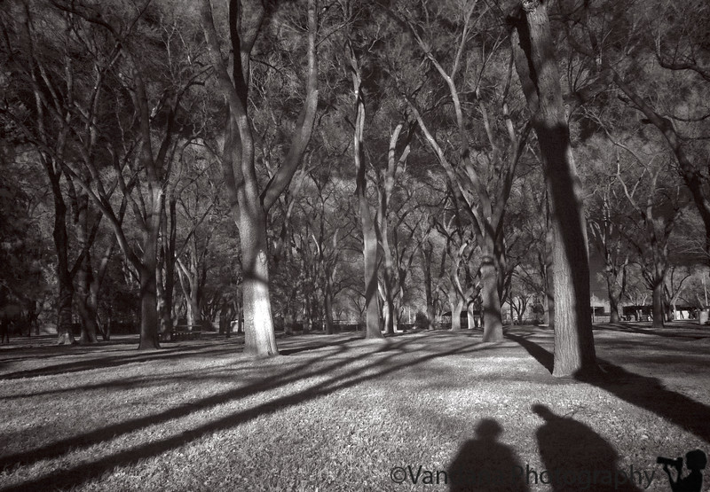 Jan 28, 2006 - Infrared at the local park. Our shadows in the midst of scary trees