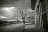 Jan 18, 2006 - my first ever attempt at IR photography - it's a new invisible world out there!
