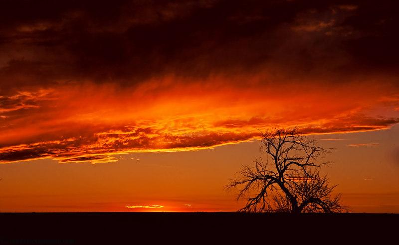 """February 22, 2007 - Post-sunset  pre-sunset <a href=""""http://vandana.smugmug.com/gallery/1550049#131488182"""">here</a>"""