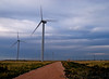 May 19, 2007 - Windmills in the storm