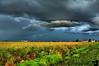September 5, 2008 - the storm light