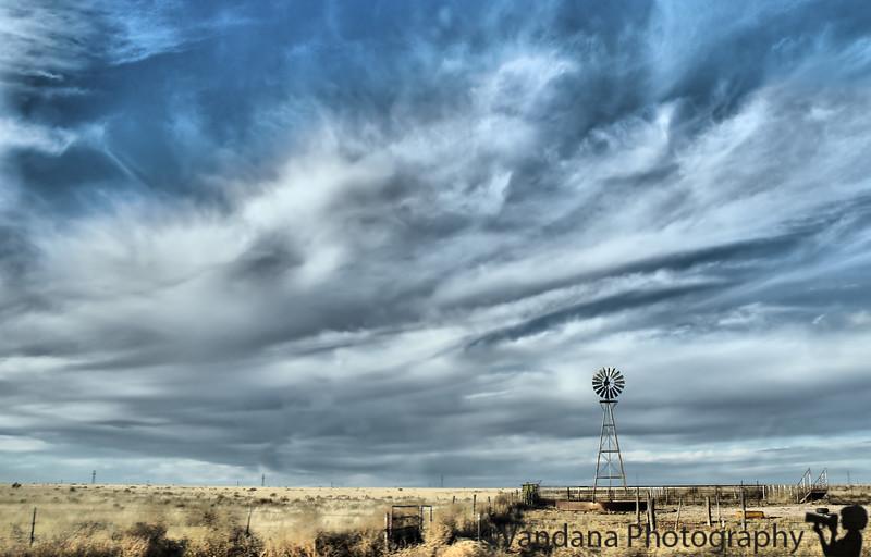 November 11, 2008 - The lone windmill