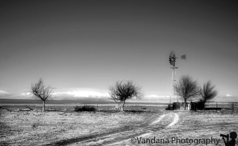 December 6, 2008 - a barren land