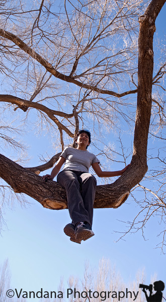 Feb 10, 2008 - Time to climb trees !<br /> <br /> a nice warm winter day ! it was about 60 !