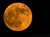 July 17, 2008 - Full moon rise.<br /> <br /> the closer it is to the ground, the more orange, the moon rise..<br /> <br /> Shot handheld with a 300mm+1.4TC, click exif for more info. then crop and sharpen in PS.