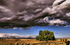 April 11, 2008 - another storm is about to hit..<br /> <br /> I just got a new laptop, and by the time, I'll get photoshop, and all my gadgets together to process, it will be a while, I guess..but it's got a wider screen and all these smugmug pics are looking so much cooler :)