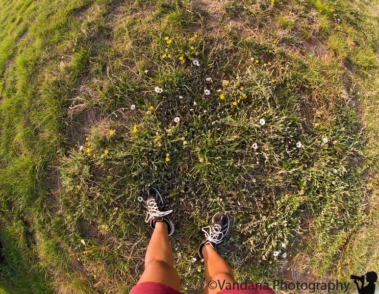 May 16, 2008 - The ground beneath my feet.