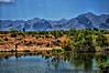 May 27, 2008 - Fishing at Tres Rios Wetlands<br /> <br /> shots from the trip to Arizona.