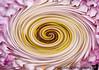 Feb 28, 2008 - Twirl !