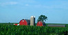 July 28, 2009 - the red barns