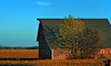 October 30, 2009 - Barn shadows