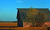 October 30, 2009 - Barn shadows